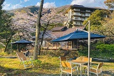 【祝オープン】森のカフェ(下部ホテル庭園内)