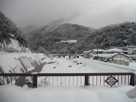 大雪物凄いです